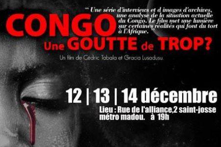 Bruxelles :  Échange sur la crise au Congo avec le monde Arabe