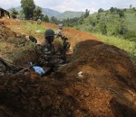 FARDC