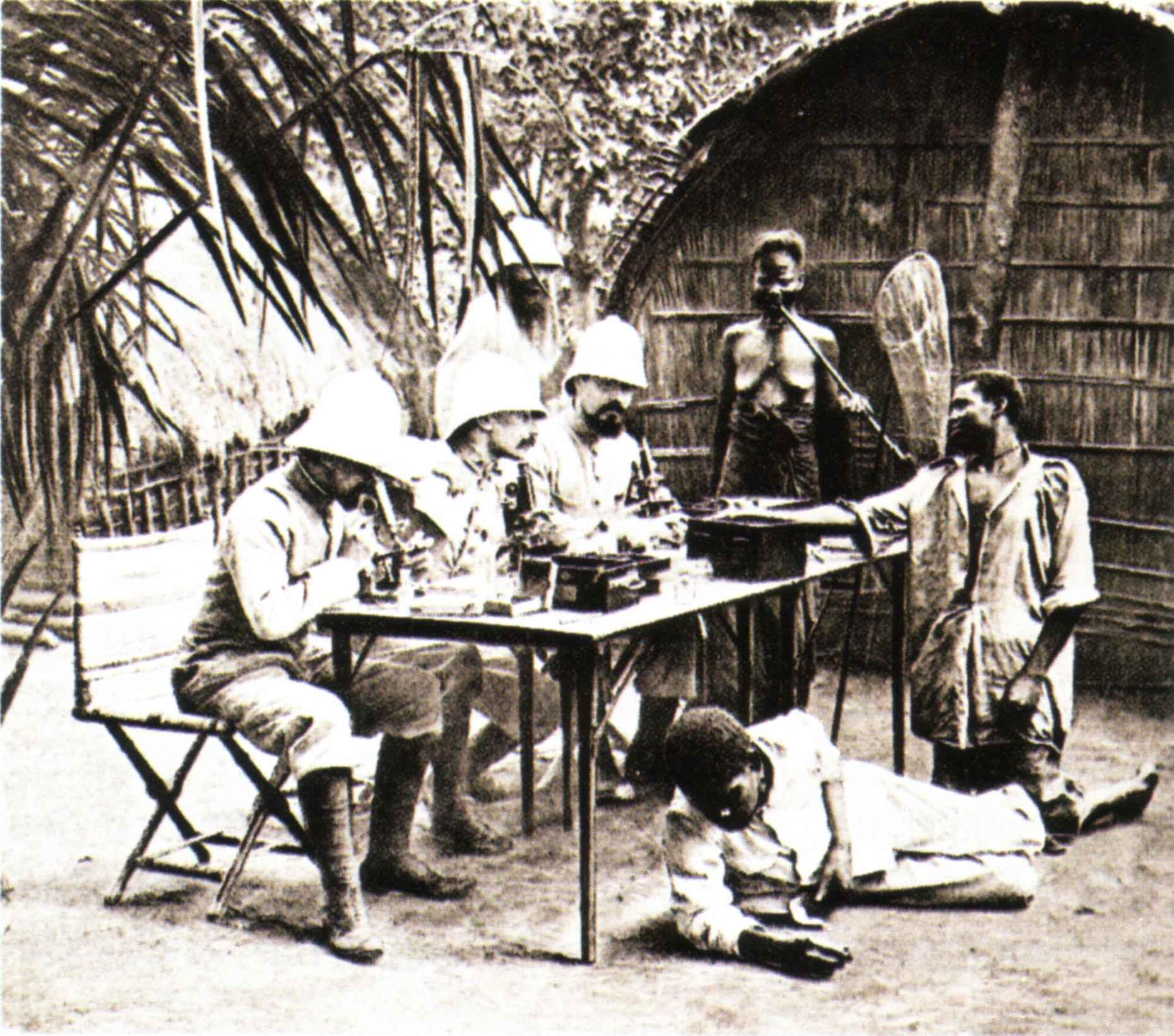 Texte Histoire de l'Afrique du Sud Leonard Thompson - Commentaire d'oeuvre - Doussard