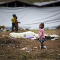 Elections et crimes contre l'humanité. La guerre perpétuelle a encore de beaux jours au Congo-Kinshasa